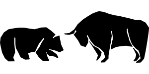 bear vs bull market