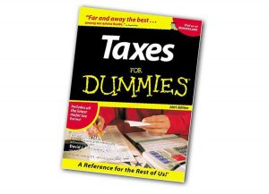 taxes for dummies book 2007